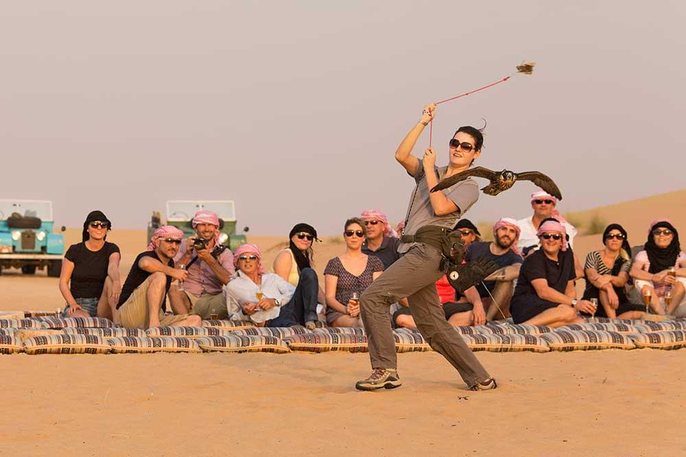 Falcon Show Dubai