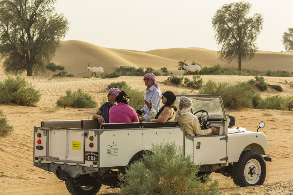Enjoy a desert safari in vintage Land Rover while spotting Arabian wild life