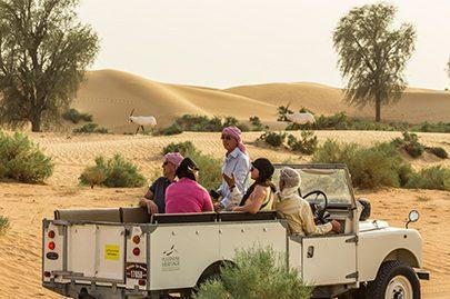Land Rover Desert Safari