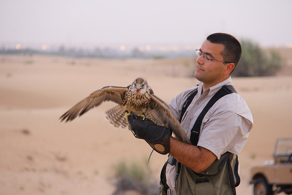 Private-Falconry-Experience-1
