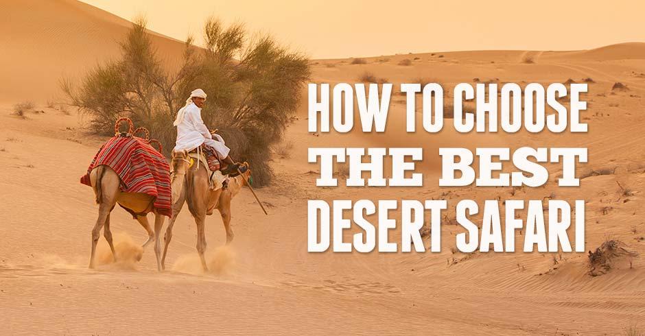Best Desert Safari How To Choose The Best Dubai Desert Safari