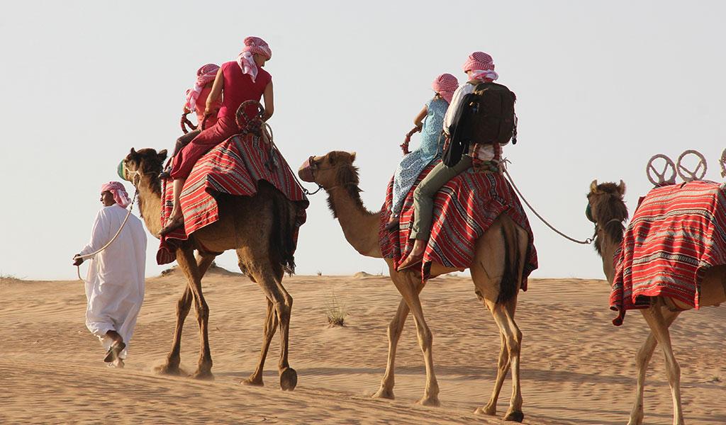 dubai-camel-desert-safari