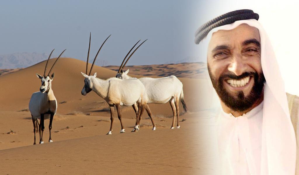 dubai-oryx-sheikh-zayed