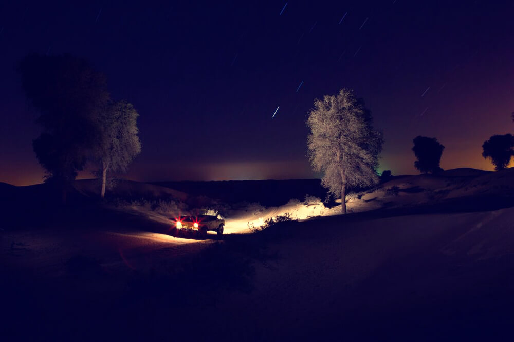 Dubai Night Safari