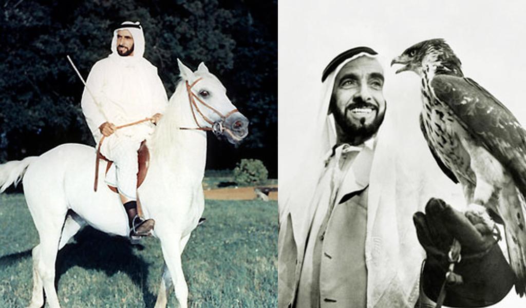 essay about al sheikh zayed