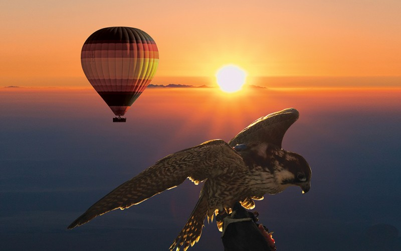 SUNRISE HOT AIR BALLOON & WILDLIFE SAFARI