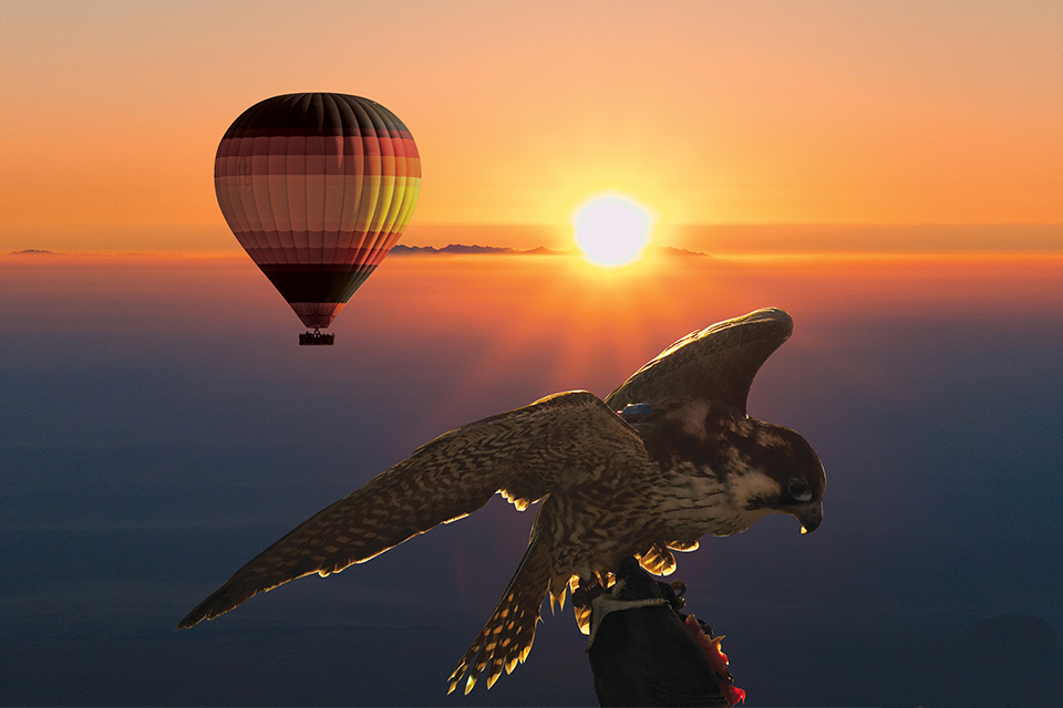 Balloon Breakfast Safari - with Dubai's #1 tour company