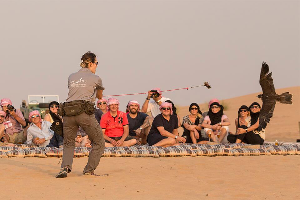 Falconry & Wildlife Morning Desert Safari
