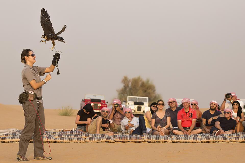 Private Falconry