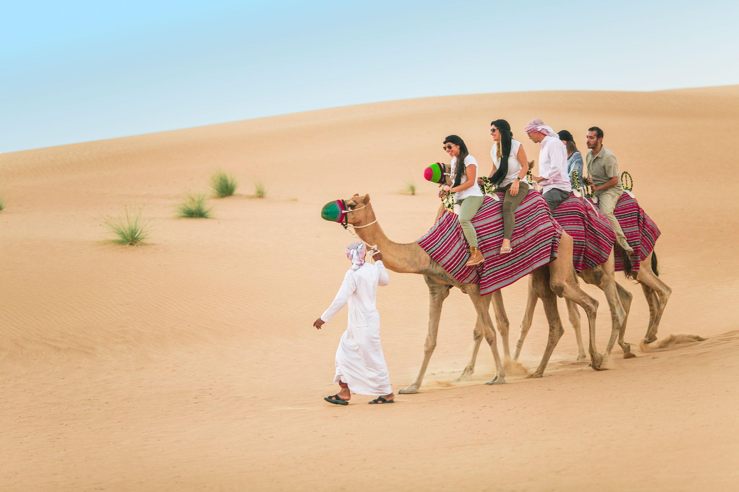 heritage-camel-desert-safari