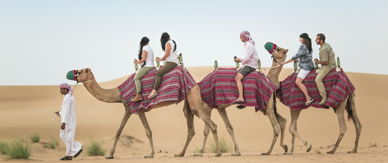 A Camel Safari – A Must Do Desert Safari in Dubai
