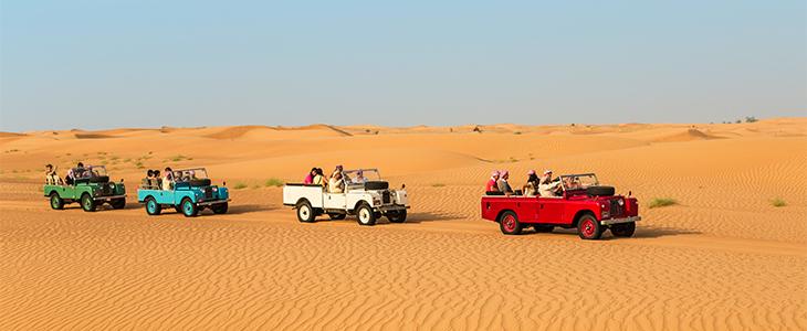 A Desert Safari in the Dubai Desert Conservation Reserve