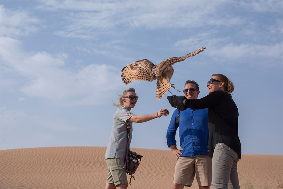 Falconry & Wildlife Safari