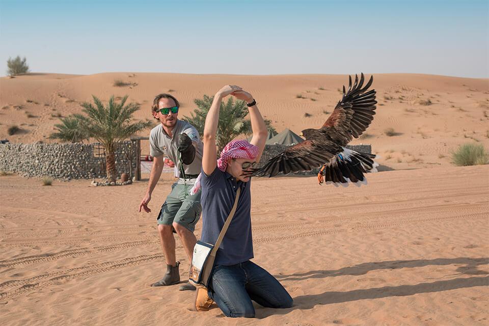 Heritage Falconry & Wildlife Safari