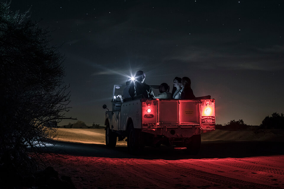 Night Desert Safari with Astronomy