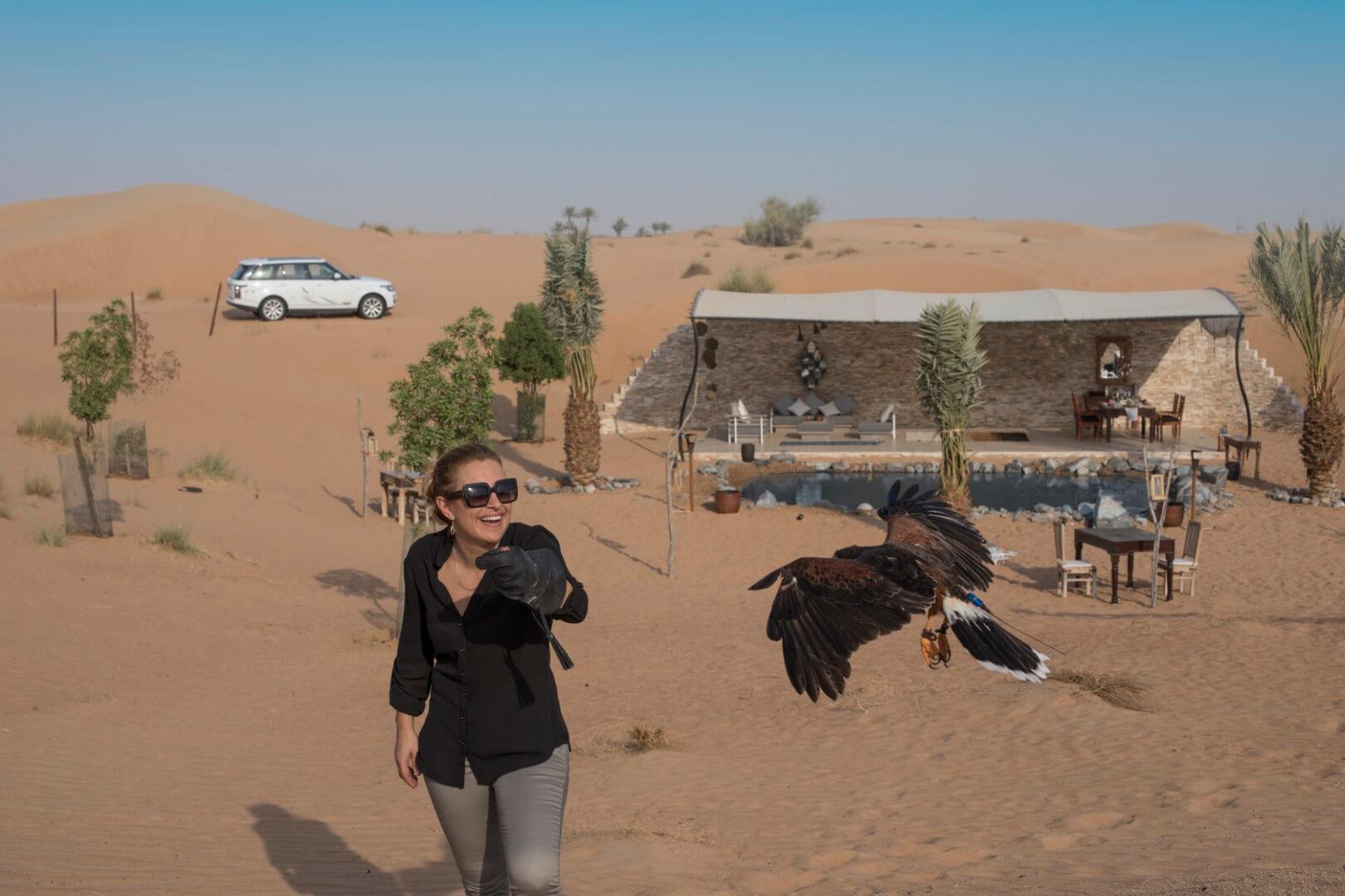 platinum falconry and birds of prey show