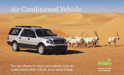 Summer Desert Safari Dubai - Enjoy a Cool Summer in Dubai