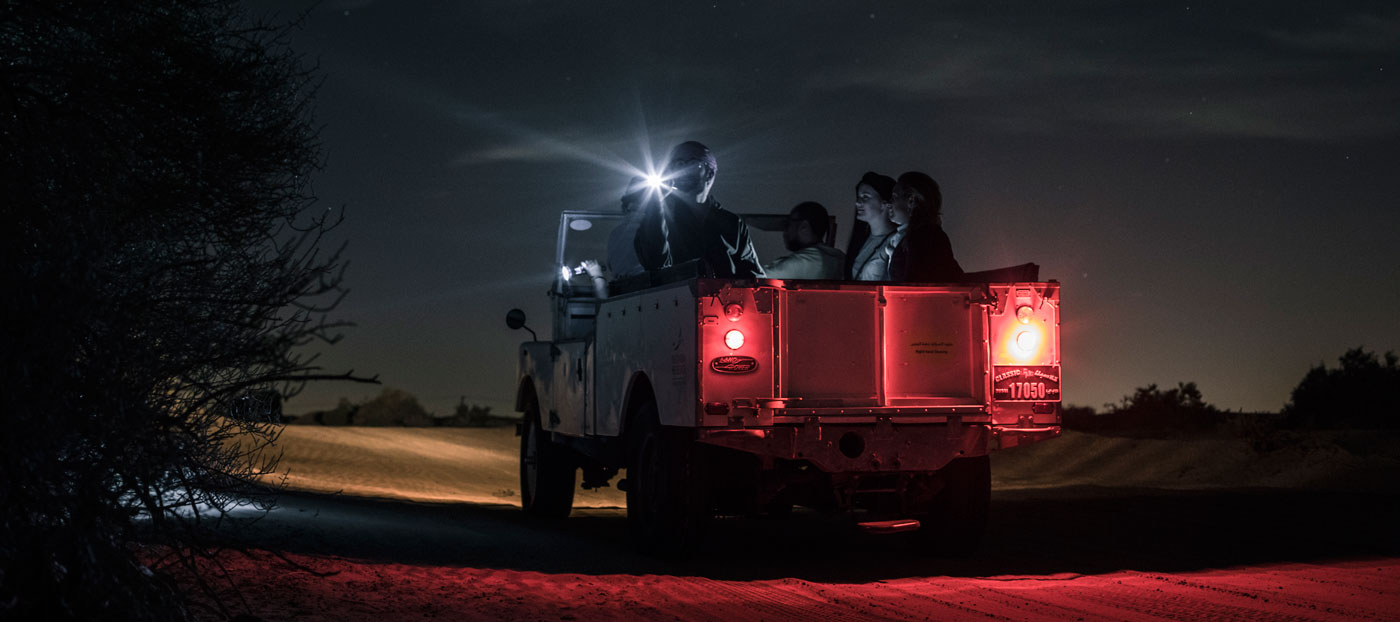 Night Desert Safari Dubai