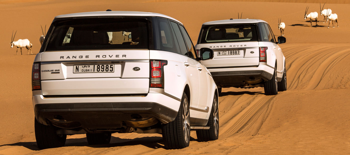Range Rove Desert Safari Back view