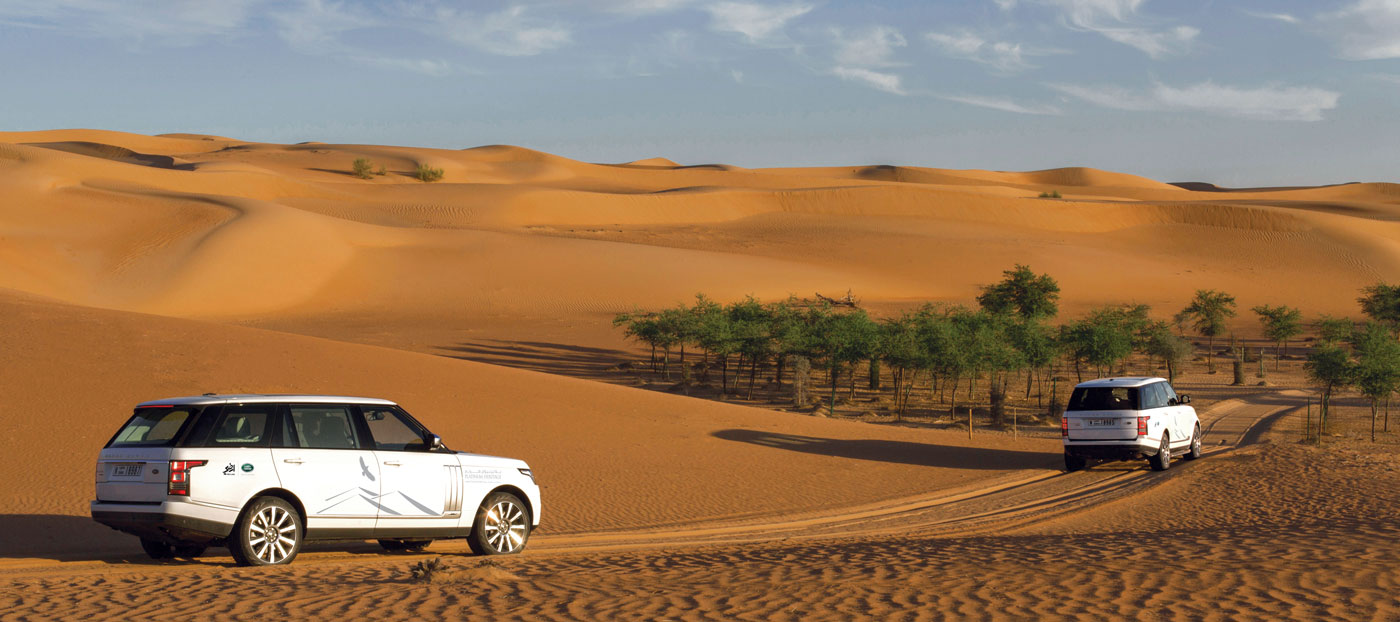 Luxury Wildlife drive Dubai