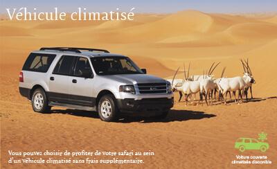 Safari d'été dans le Désert