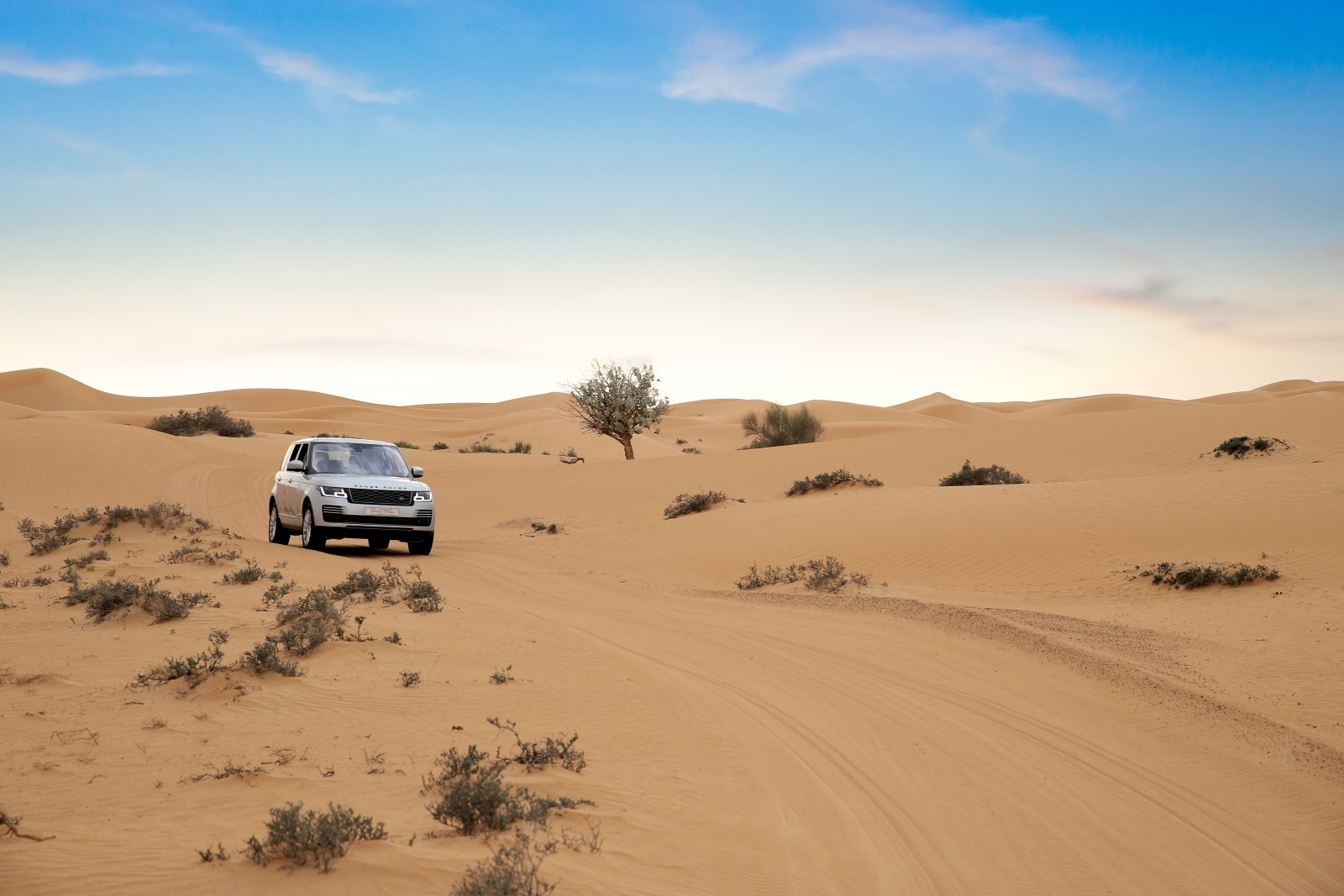 Luxury Platinum Desert Safari