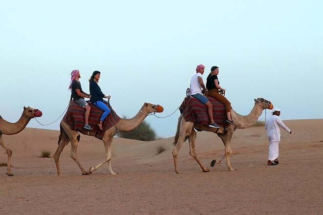 Ethical Animal Tourism in Dubai